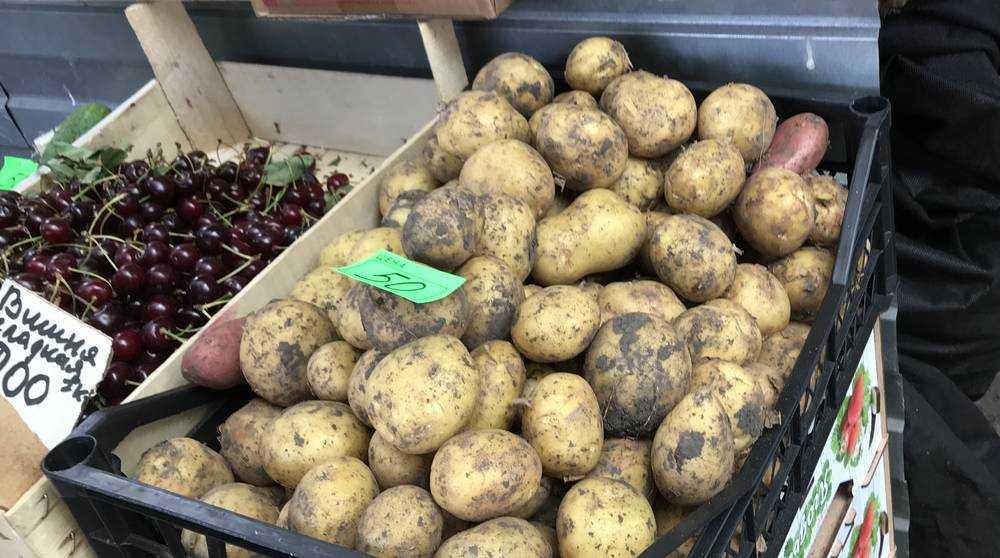 Брянские продавцы объяснили огромную цену картофеля