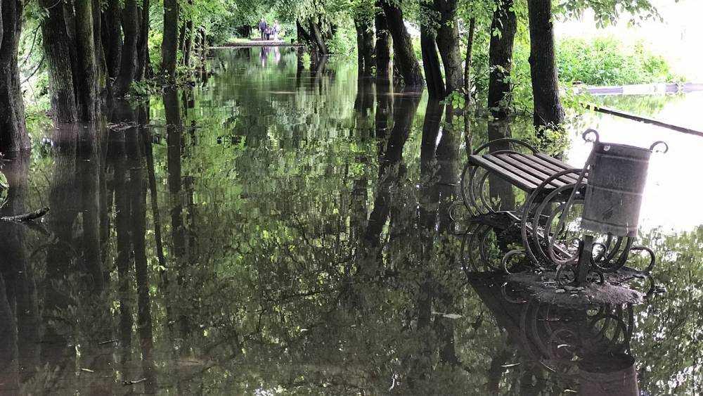 Потоп отобрал у брянских пьяниц зону удовольствия