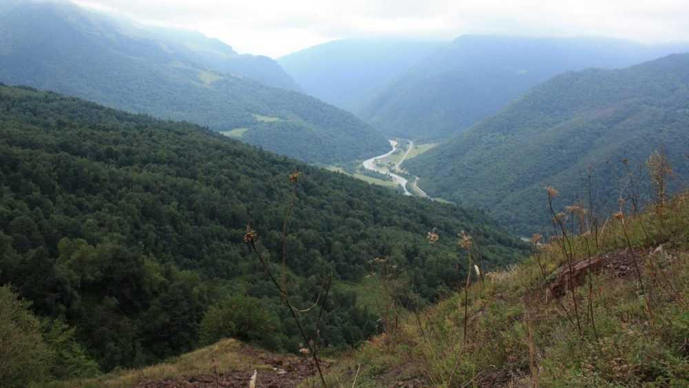 Брянскому инвалиду отказали в путевках на курорт Кавказа