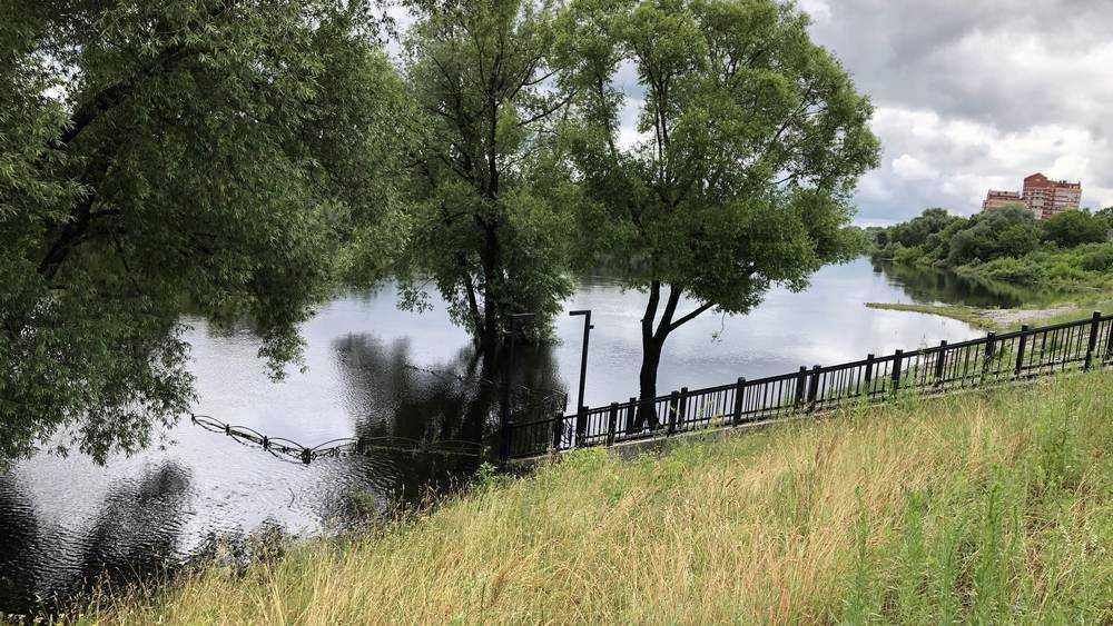 Десна очаровала жителей Брянска красотой летнего разлива
