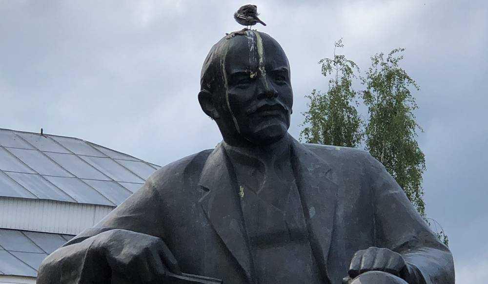 Брянских коммунистов призвали защитить бедствующего вождя