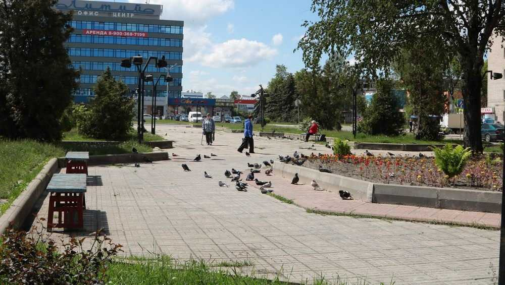 В Брянске обновлённый сквер «Литий» украсит каскадный фонтан