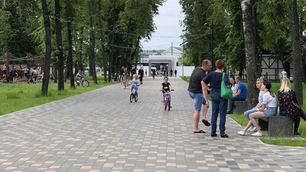 Распущенные подростки и «боров» вызвали гнев жителя Брянска