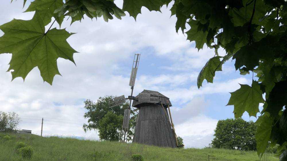 Известной мельнице в Овстуге потребовались костыли
