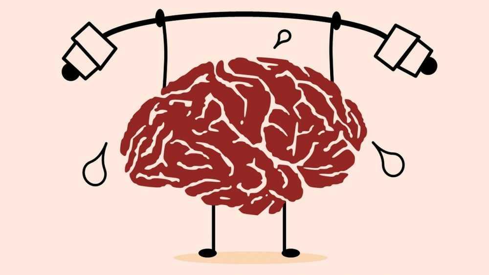 Зачем нужны тренажёры для мозга и что они из себя представляют
