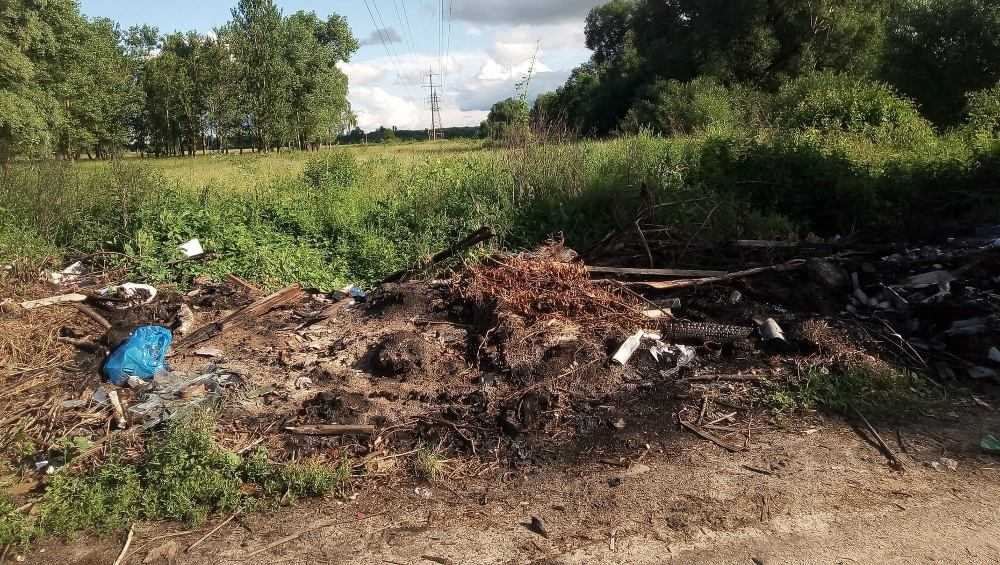 Брянцы потребовали ликвидировать еще одну незаконную свалку мусора