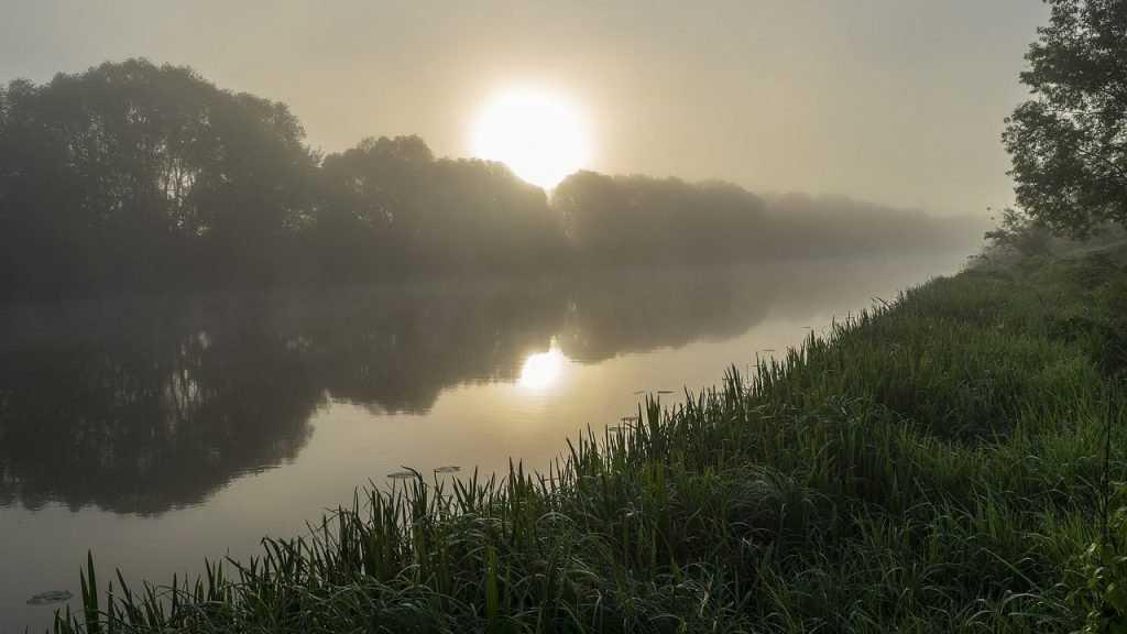 В Брянской области ночью 4 августа похолодает до 7 градусов