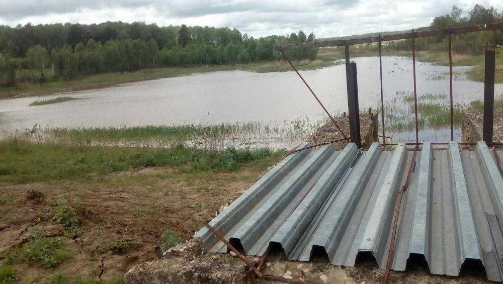В брянском поселке Локоть высохшее озеро наполнилось водой