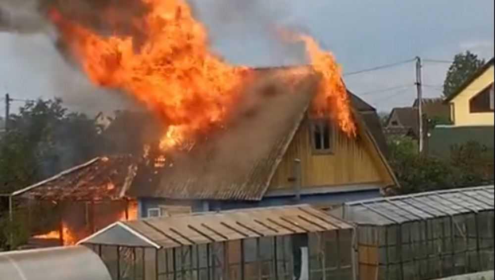 В Брянске сняли видео страшного пожара на дачах
