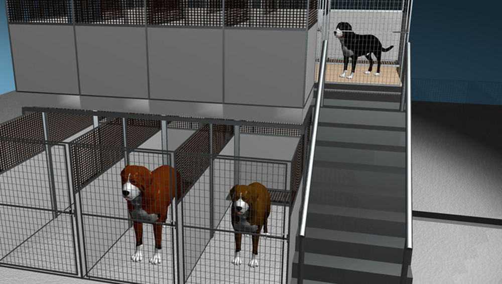 В Брянске приступили к проекту приюта на 500 мест для бродячих собак