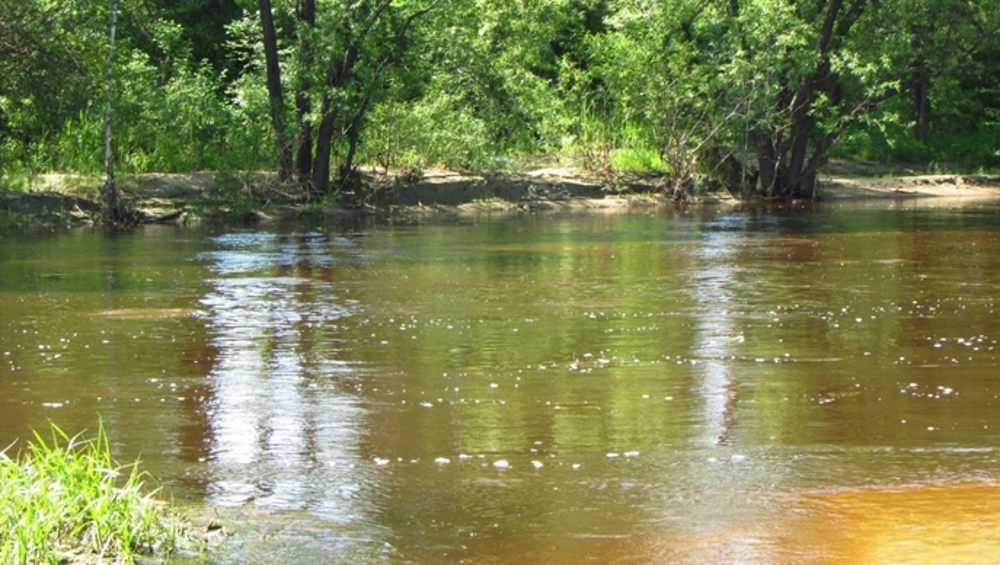 Из-за дождей река Болва стала угрозой для брянцев