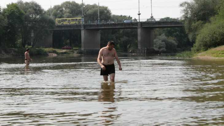 В Брянске полиция призвала к порядку отдыхающих на пляже