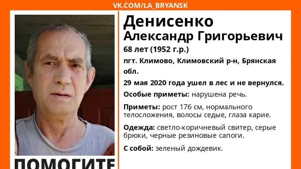 В Климове ночью продолжились поиски пропавшего в лесу 68-летнего мужчины