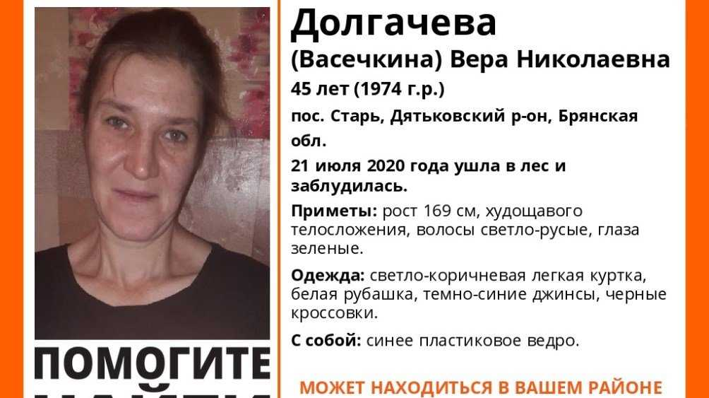 Под Дятьковом пропала заблудившаяся в лесу 45-летняя Вера Долгачёва