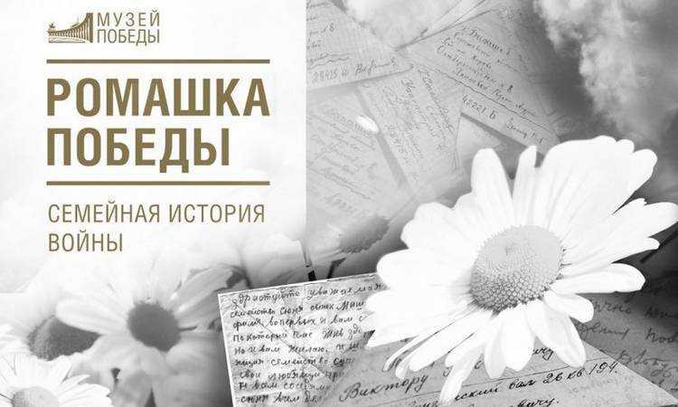 Жителей Брянской области пригласили на программу ко Дню семьи, любви и верности