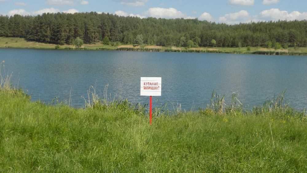 Под Стародубом на озере Бахаевка отдыхающие спасли тонувшего человека