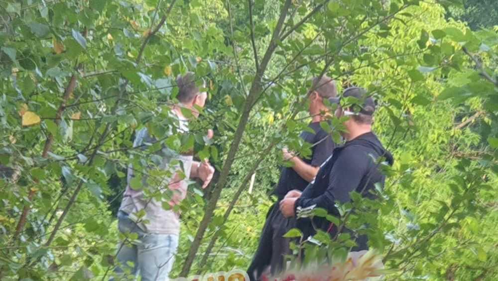 Боксеры избили студентов-шашлычников в Брянске в «Соловьях»