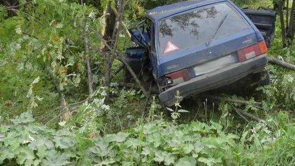 В Климовском районе погиб водитель, наехав на дерево