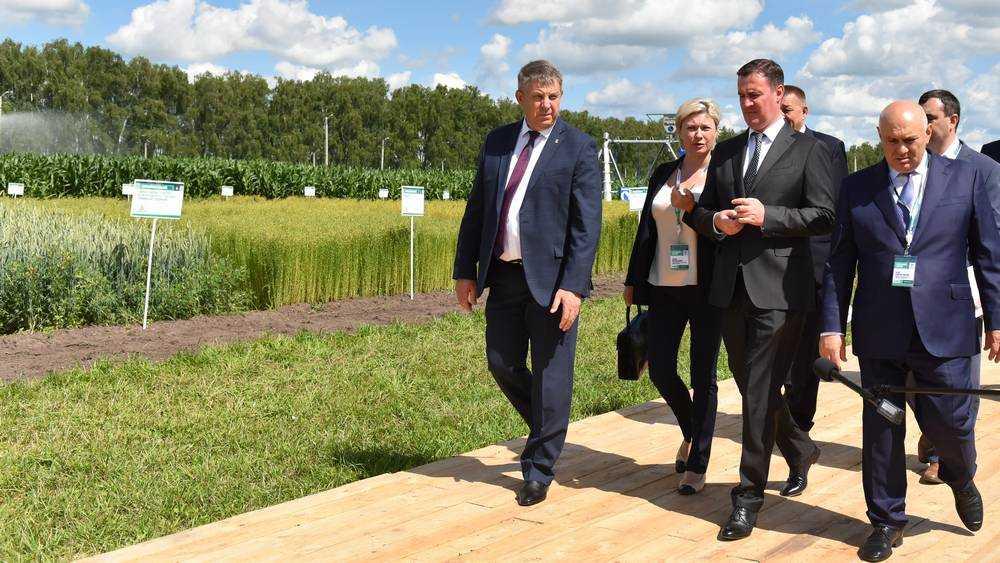 В Брянской области на развитие сел израсходуют 483 млн рублей