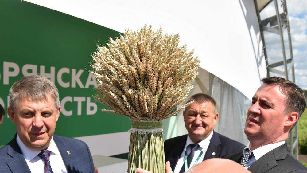 Министр Дмитрий Патрушев назвал Брянщину аграрным лидером