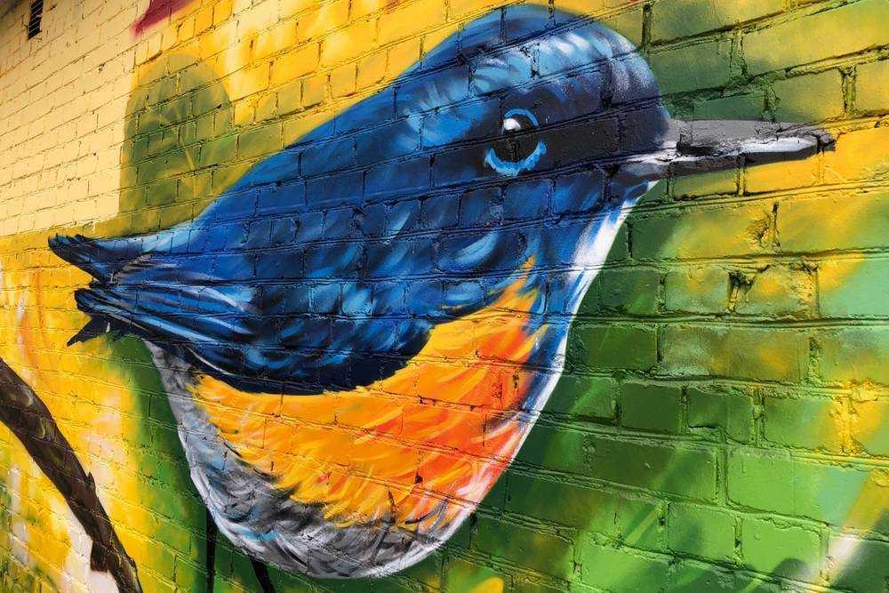 Птичка для покупателей Бежицкого универмага