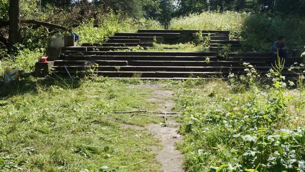 Энтузиасты начали благоустраивать бывший парк в Хотылево под Брянском