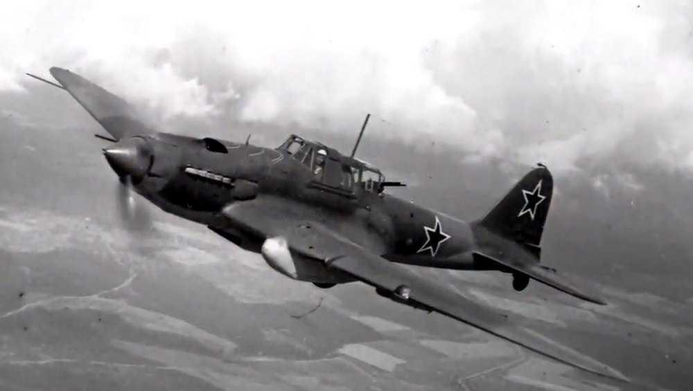 Возле Белых Берегов определили место падения Ил-2 в годы войны