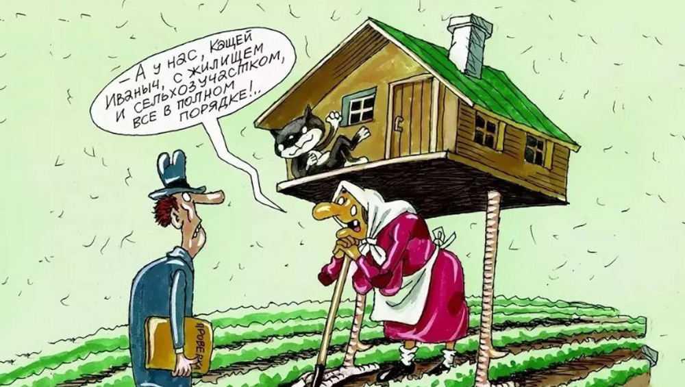 Брянский селянин подарил жене изымаемую у него землю