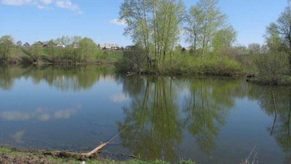 Из озера под Новозыбковом достали тело голого мужчины