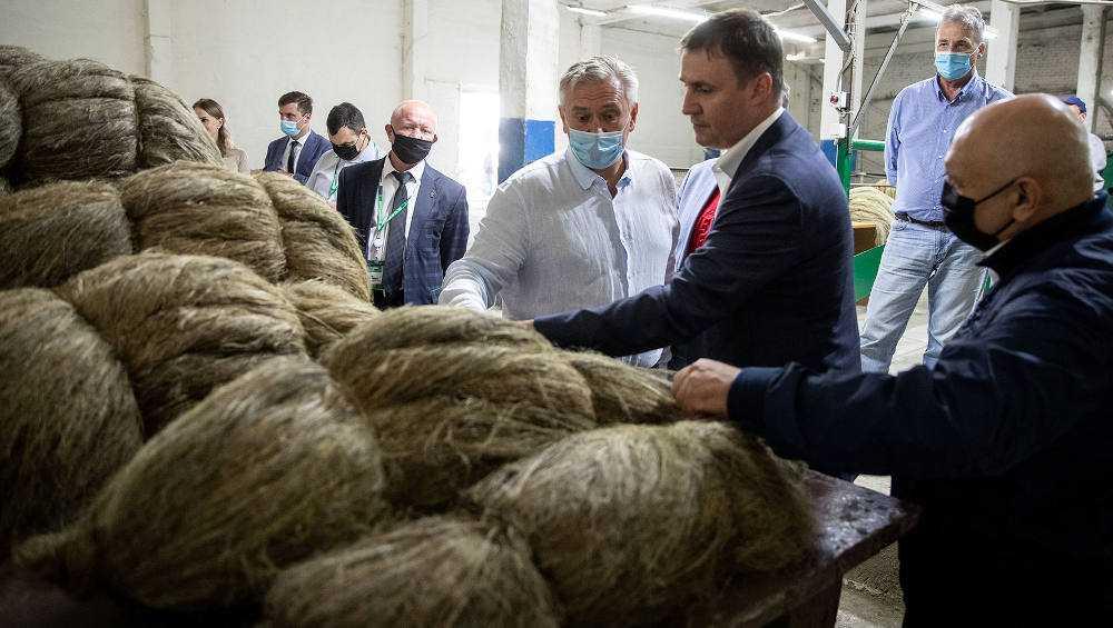 Министр сельского хозяйства Патрушев оценил брянский лен