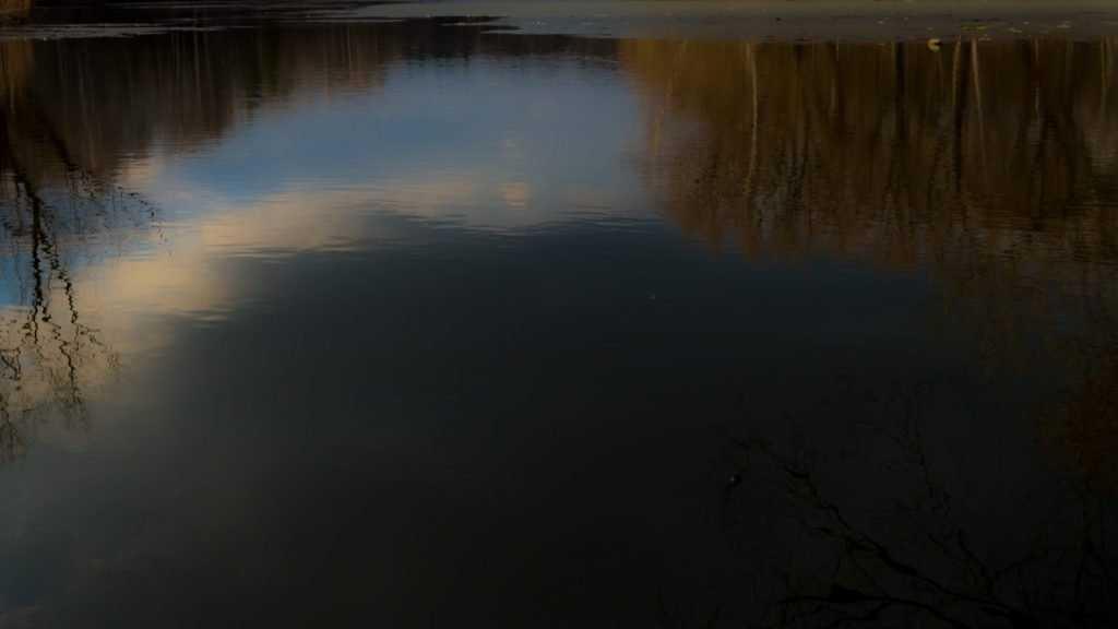 Жители Новозыбкова заметили бензиновые разводы в реке Ипути