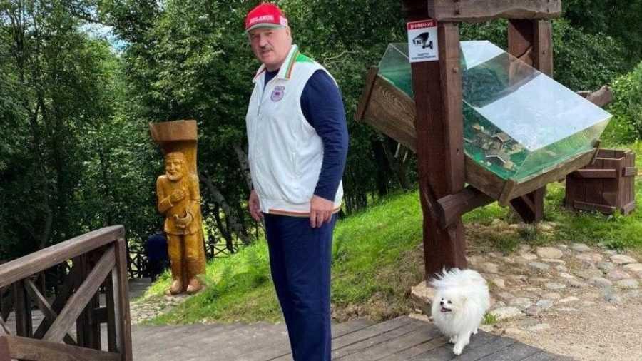 Источником новости об экстренном обращении Лукашенко оказался «забор»