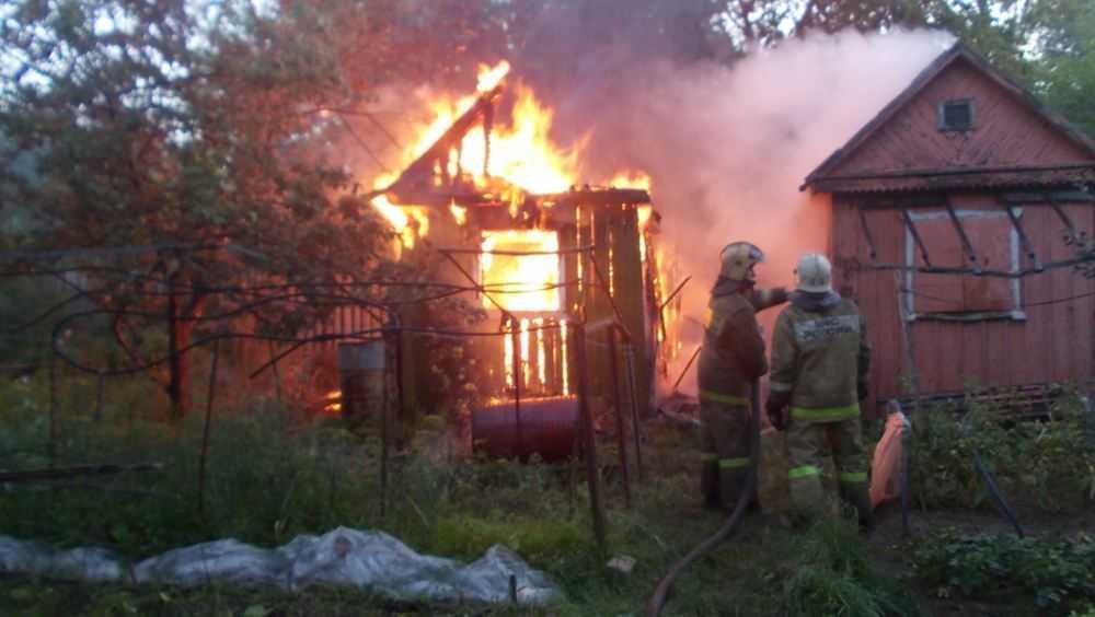 В Брянске в садовом обществе «Лесная сказка» дачник пострадал от огня