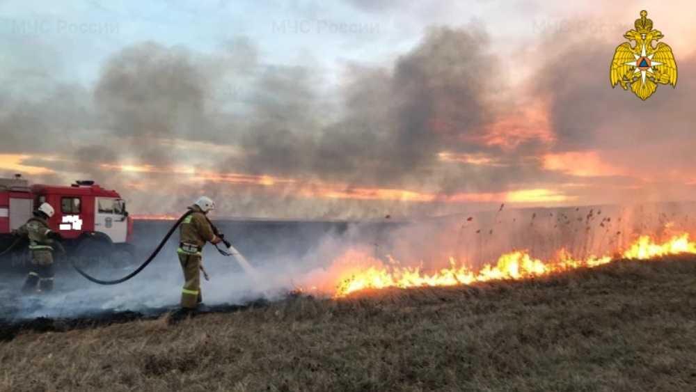 Под Севском в поле сгорели пшеница, грузовик и комбайн