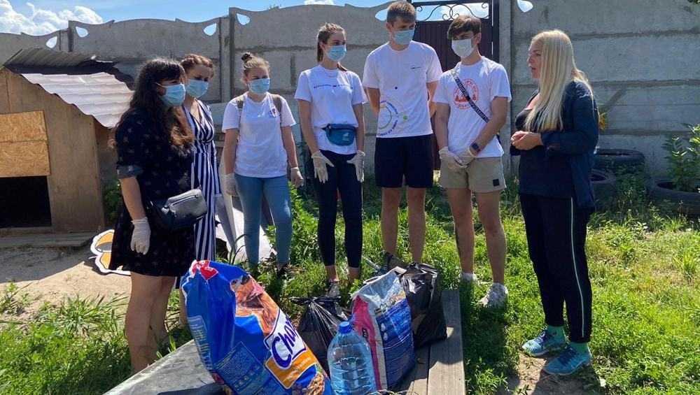 Брянские волонтеры порадовали кошек и собак приюта «Второй шанс»