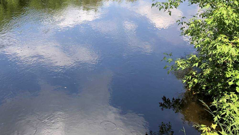 В Трубчевском районе в Десне утонул 36-летний мужчина