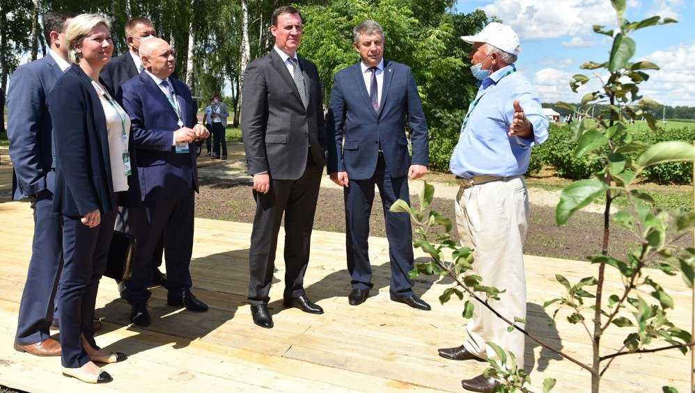 В Брянской области глава Минсельхоза Патрушев оценил яблоневый сад