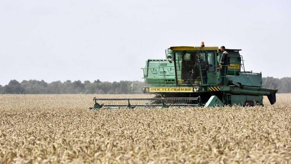 Брянские фермеры получат право поставлять зерно Вьетнаму