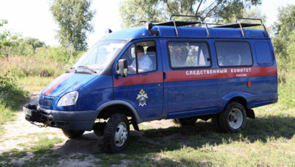 В Брянской области в 2020 году произошло 56 тяжких преступлений