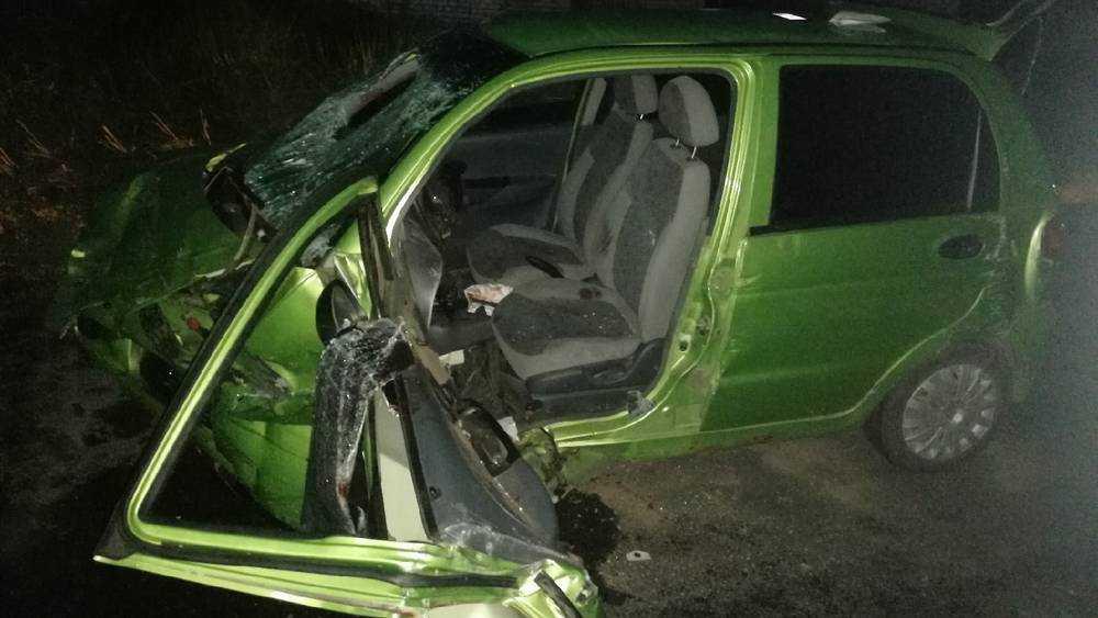 По вине женщины двое детей и четверо взрослых ранены в Сельцо в ДТП