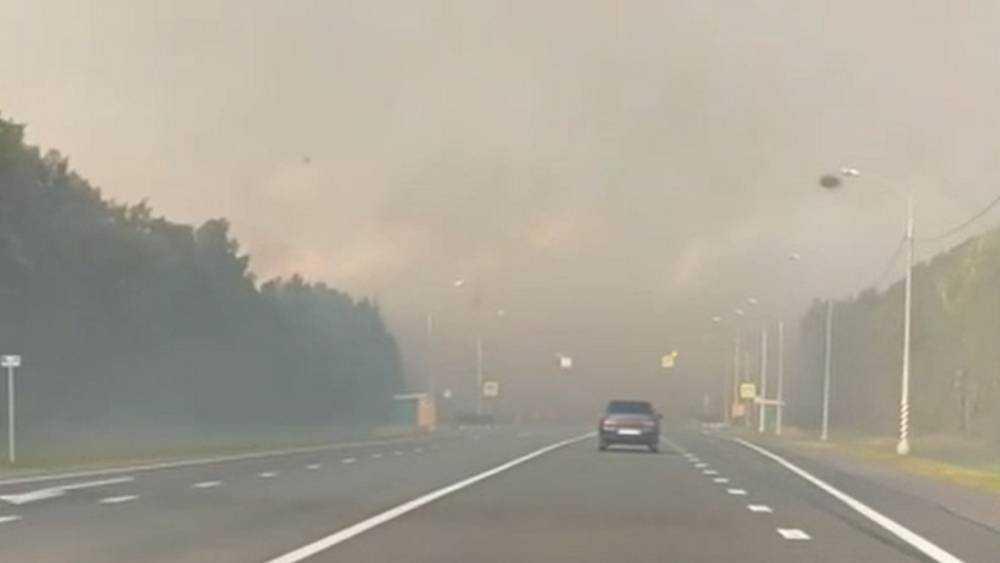 Трассу в Брянской области заволокло дымом огромного пожара