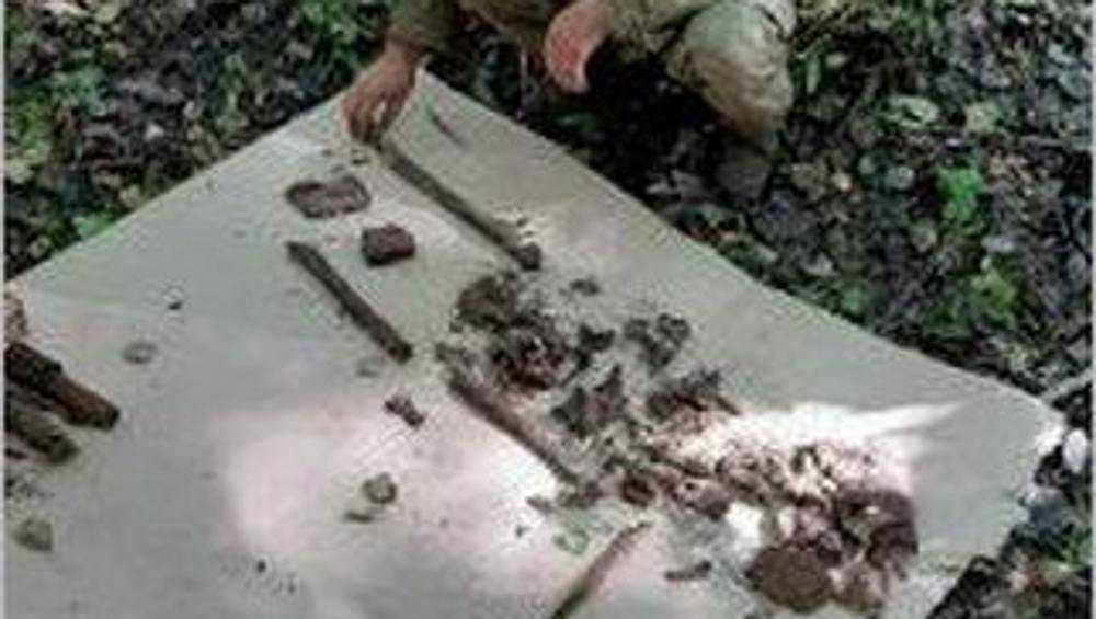 В Дятьковском районе нашли останки геройски погибшего красноармейца