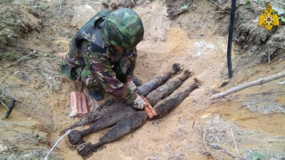 Под Карачевом в лесу обезвредили 13 снарядов и шесть мин