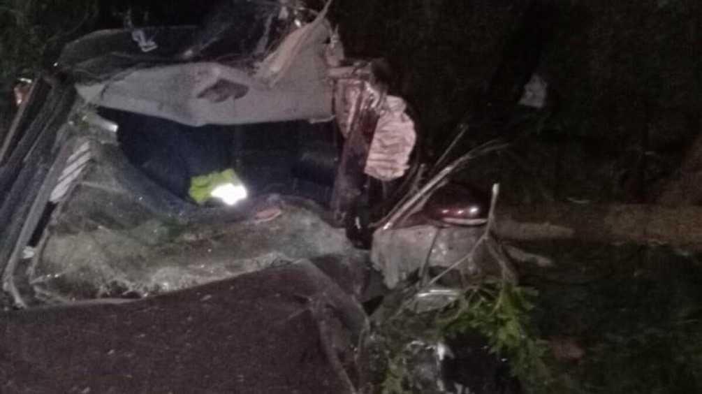 Под Трубчевском иномарка протаранила дерево – погибли два человека