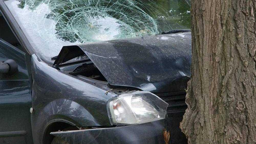 Под Клинцами водитель съехал в кювет и врезался в дерево