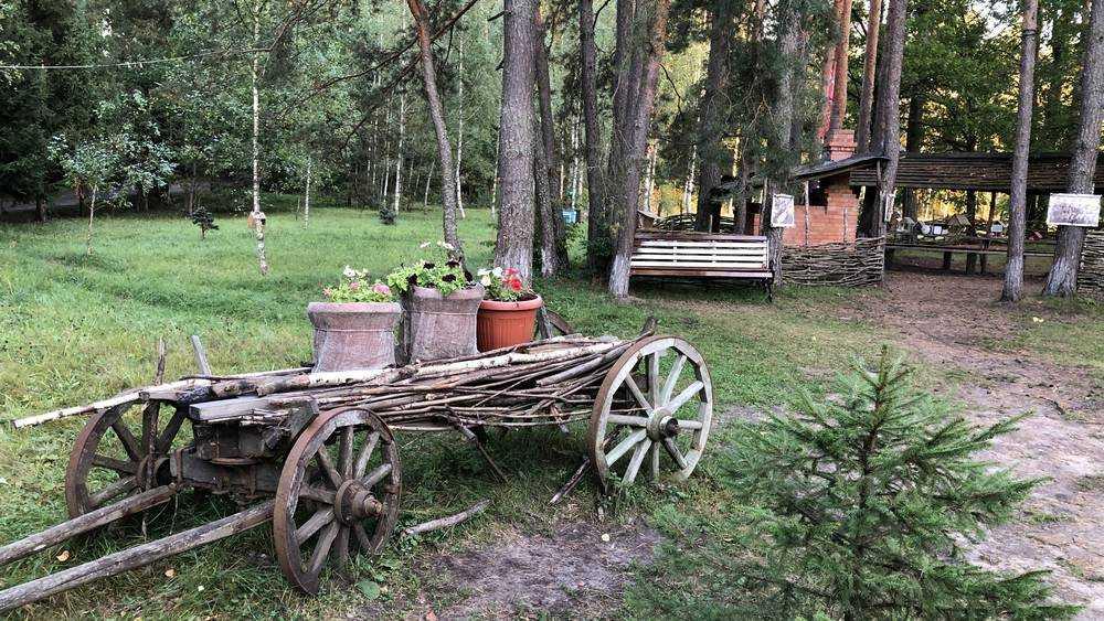 Обновленная «Партизанская поляна» под Брянском стала местом притяжения