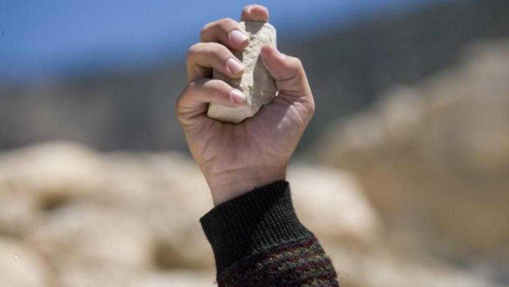 В Брянске осудили кинувшего камень в женщину «собачника»