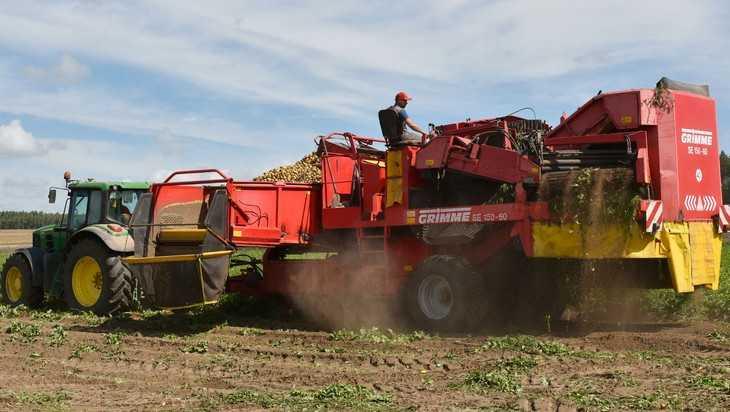 Брянские аграрии до 10 октября намерены собрать урожай и посеять озимые
