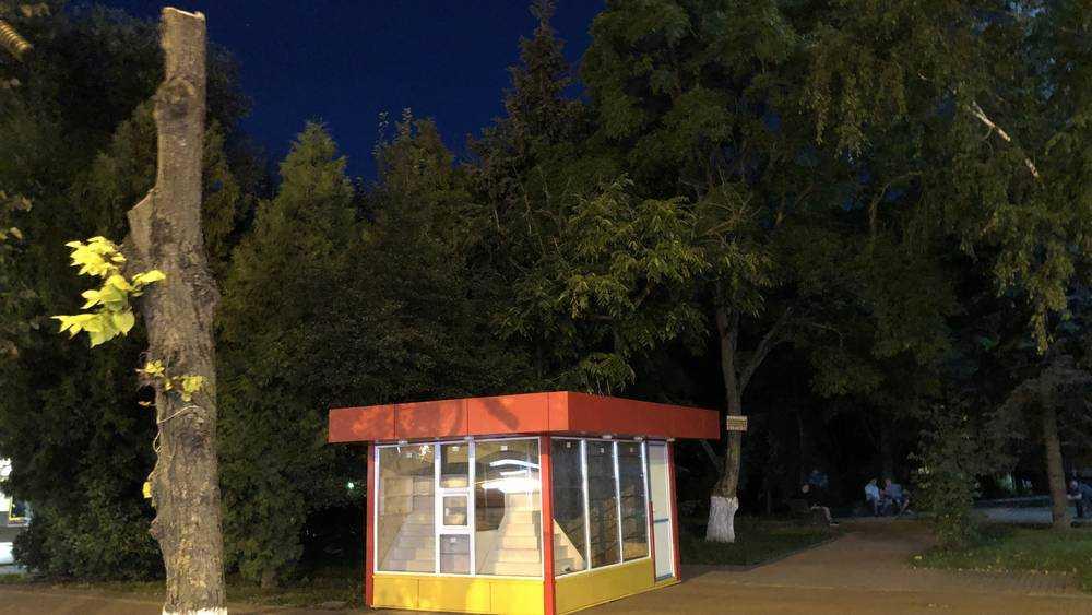 «Они издеваются»: брянского архитектора потряс новый киоск у «Родины»