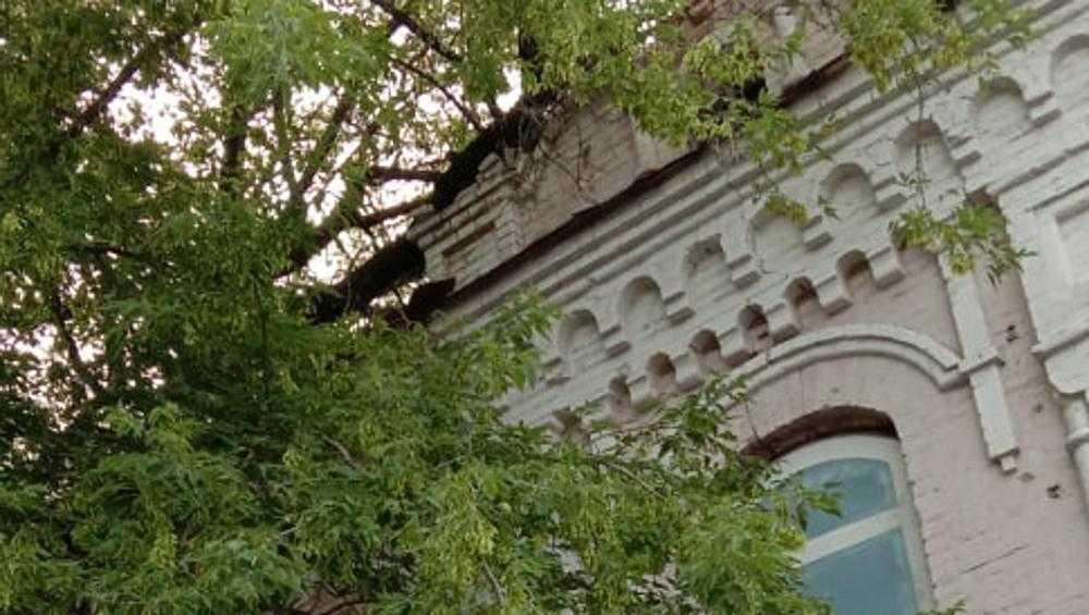 В Брянске отвалившийся с крыши здания кирпич чуть не угодил в прохожую